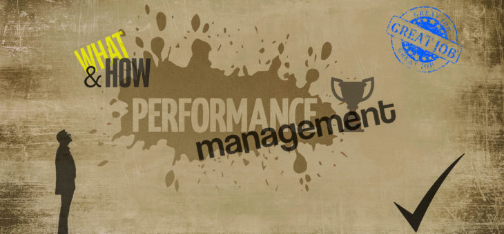 What and How: The Two Elements of Performance Management