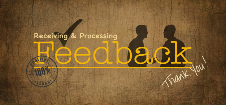Feedback: How to Receive, Process and Use It