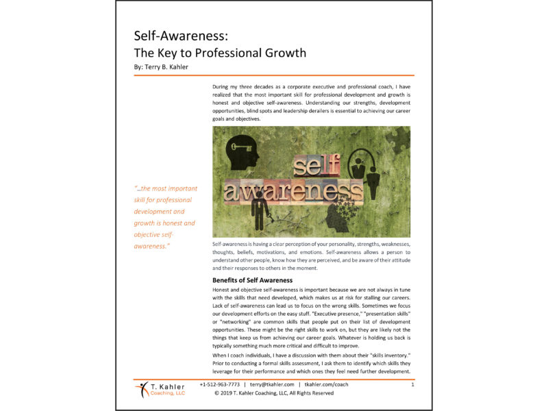 The Self-Awareness Article in PDF