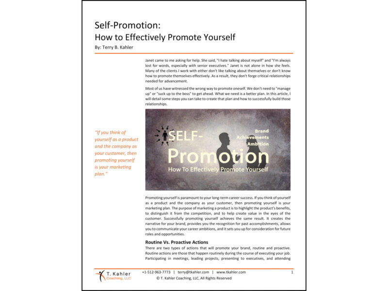 Self Promotion Article in PDF